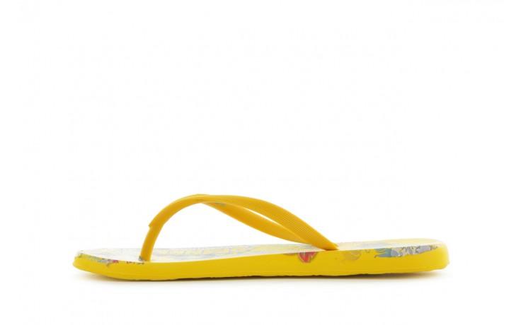 Hortensia 023 yellow - azaleia - nasze marki 2