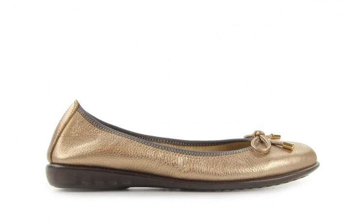 The flexx miss italia gold - the flexx - nasze marki