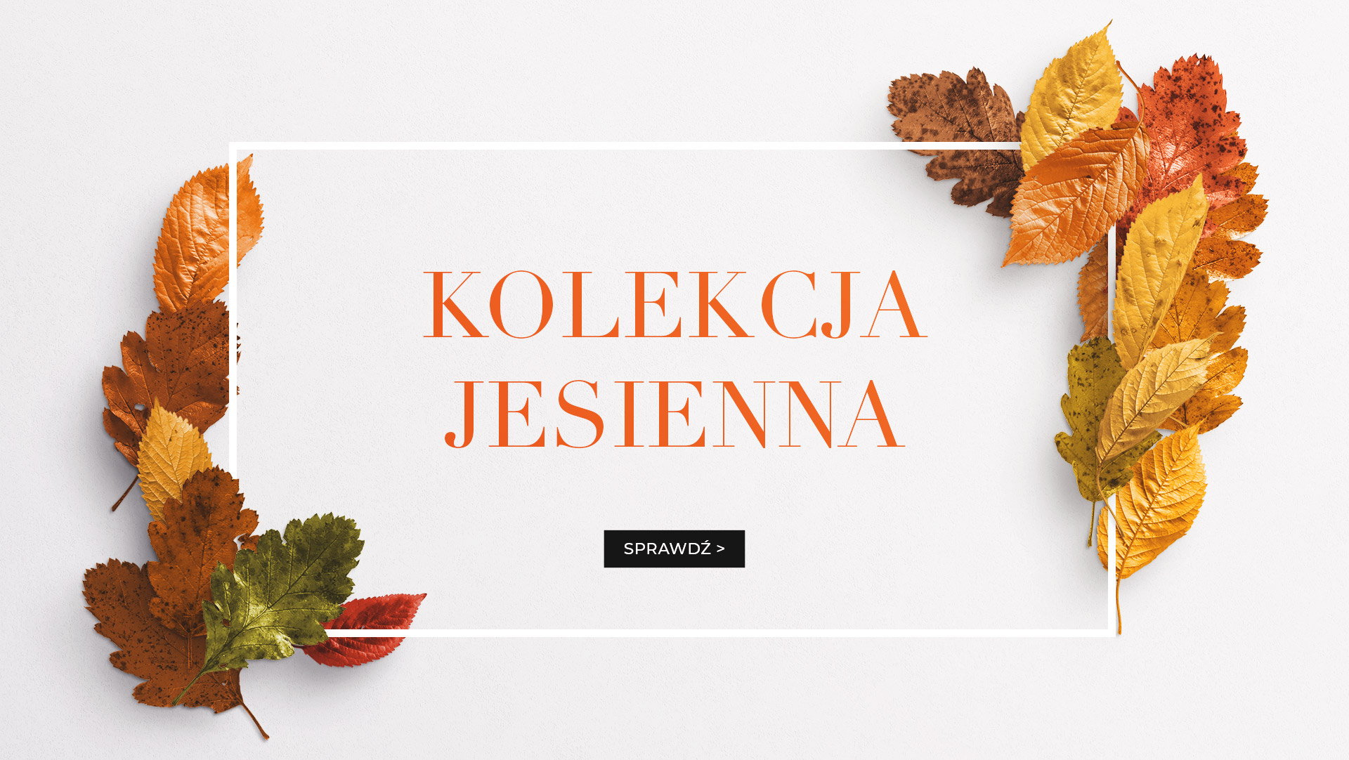 Kolekcja Jesienna